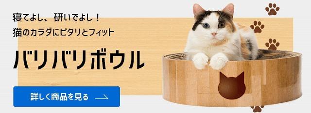 残す 猫 ご飯
