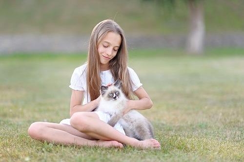 猫と女性の意外な共通点…。猫が年を取ったな~と感じる3つのポイント