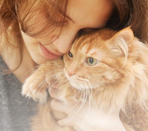 猫にとっての幸せってなに?