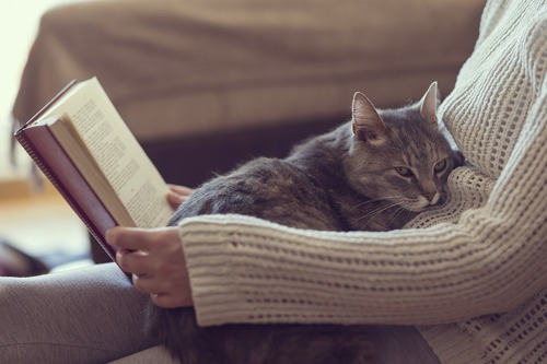 いなくなっちゃうの?猫が『死』を悟ったらする4つの行動