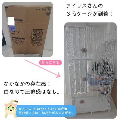 猫壱社員、初めての「幸せ猫ぐらし」お迎え準備編①