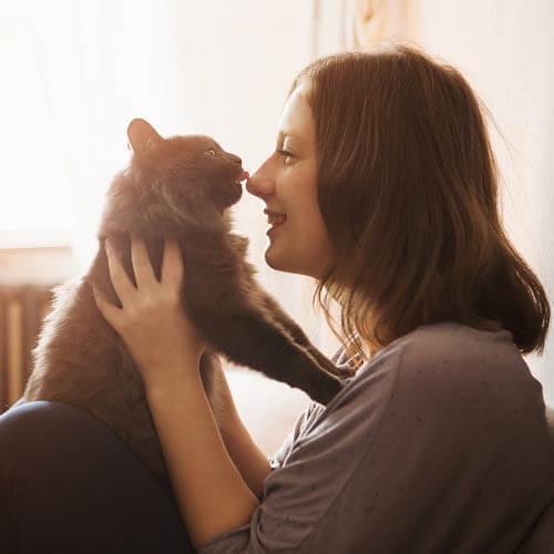 アレが出る場所を触れば猫にモテる?!猫を撫でる時に知っておきたい極意
