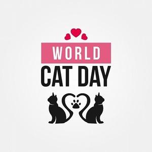 猫の日はいつ?日本と世界の猫の日とおすすめの過ごし方